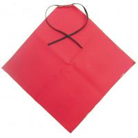 Varoituslippu M+ punainen 30X30cm